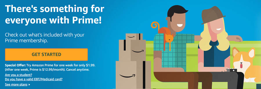 Amazon Prime is the world's most famous subscription service.