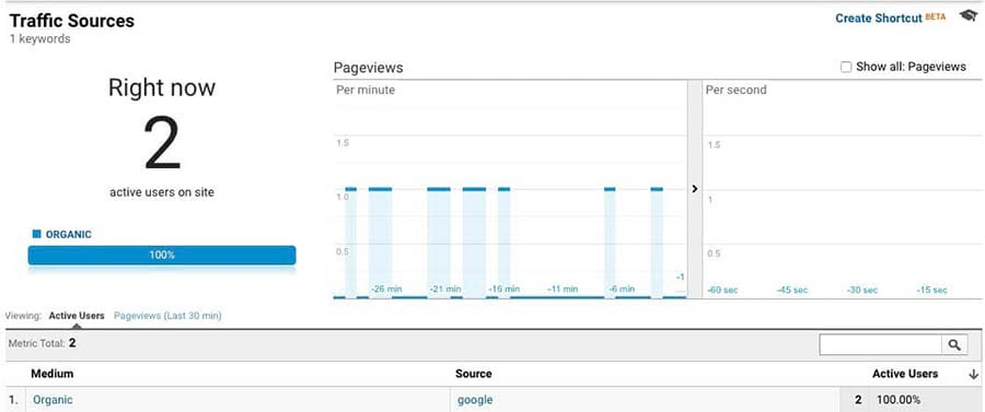 Analytics organic search results
