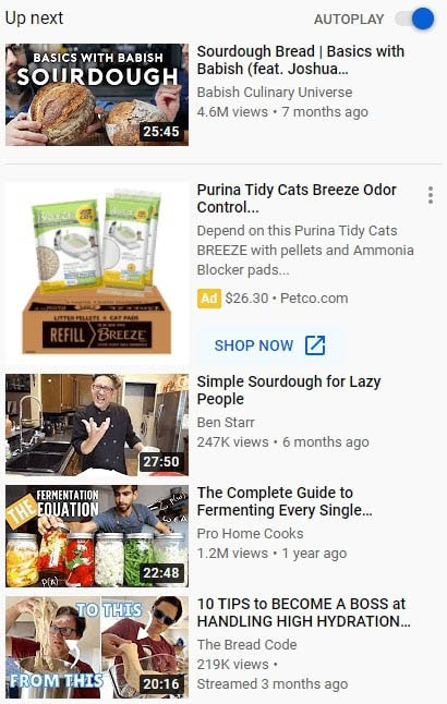 YouTube's suggested videos section