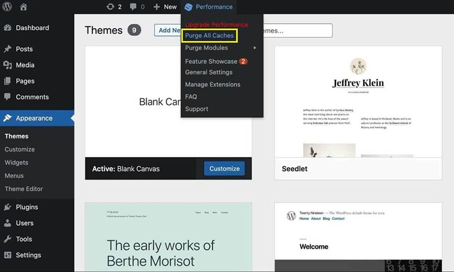 Purging all caches in the WordPress dashboard Appearance menu.