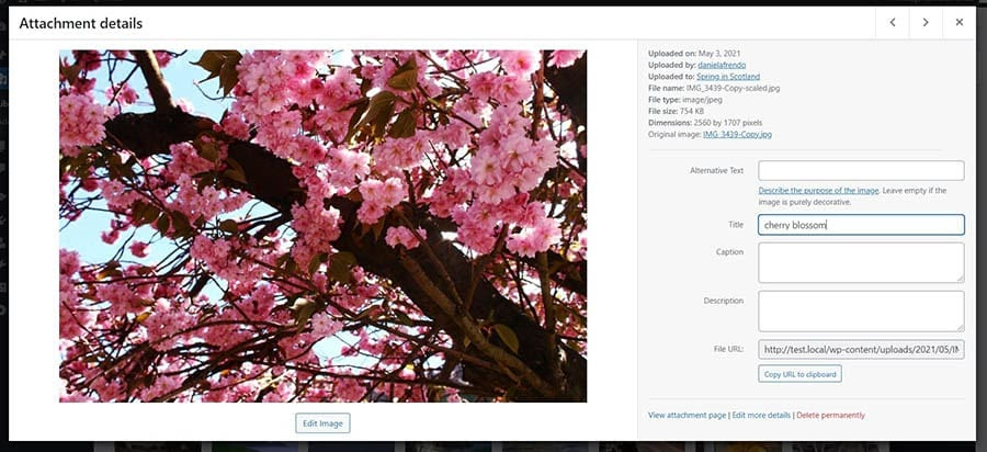 Cropping images in WordPress.