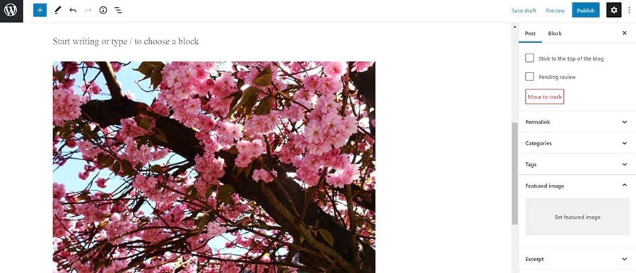 Setting a featured image in WordPress.