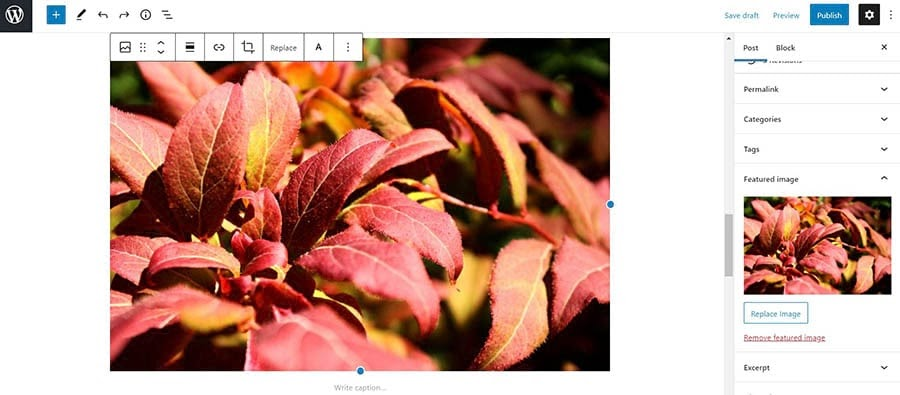 Fixing a featured image appearing twice issue.